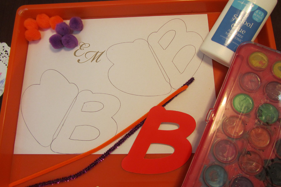B is for Butterfly supplies