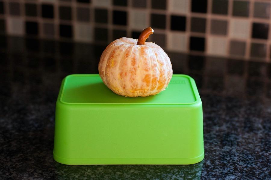 Pumpkin Clementine